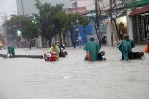 TP.HCM: Bão số 9 gây mưa lớn, cây đổ đè chết một người đi đường