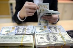 Tỷ giá USD chợ đen giảm nhẹ