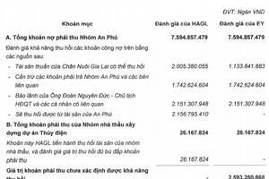 HAGL lên tiếng về nghi ngờ khả năng thu hồi gần 2.600 tỉ đồng phải thu của nhóm An Phú