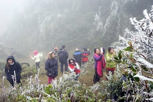 Dự báo thời tiết 3/12, miền Bắc lạnh dưới 11 độ, vùng núi dễ có băng giá
