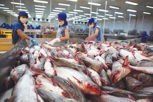 VDSC: Đánh giá kết quả ngành cá tra trong 10T 2020 và triển vọng cho năm 2021