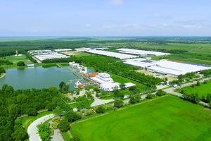 Vinamilk lọt top 200 công ty có doanh thu trên 1 tỷ đô tốt nhất Châu Á Thái Bình Dương