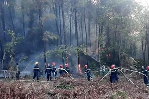 Hà Tĩnh: Cơ bản khống chế được vụ cháy rừng tại huyện Nghi Xuân