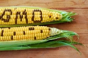 Hoa quả to lạ có phải là thực phẩm biến đổi gen?