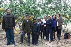CLB khuyến nông thôn Ngọc Bộ: ước mơ xây dựng thương hiệu nông sản sạch
