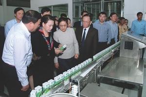Mộc Châu Milk: Thảo nguyên xanh, sữa mát lành