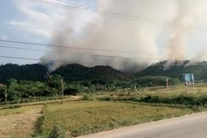 Cháy rừng ở Sóc Sơn cơ bản được khống chế