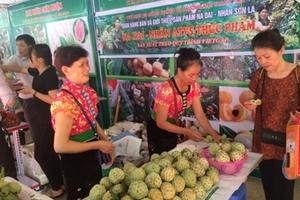 Hà Nội đẩy mạnh kết nối tiêu thụ nông sản và du lịch của Sơn La