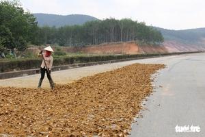 'Đường đẹp nhất Tây Nguyên' thành... sân phơi nông sản