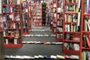 Hiệu ứng domino trong thư viện