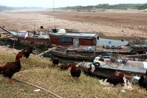 """10 trạm bơm dọc sông Lô, sông Gâm đang """"khô hạn"""""""