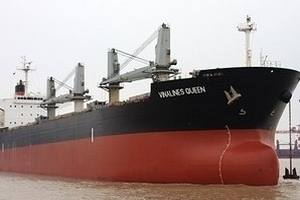 Người sống sót của tàu Vinalines cập cảng Singapore