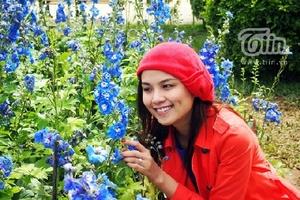 Diễm Hương lạc giữa vườn hoa Xuân