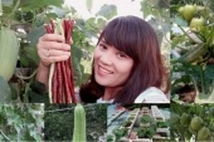 Vườn rau nhỏ xinh xắn, xanh mướt trên sân thượng của bà mẹ trẻ đảm đang ở Thanh Hóa
