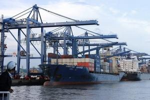 Gần 900 container hàng tồn đọng vì… các hướng dẫn