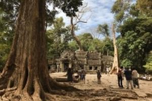 Lịch trình chi tiết 5 ngày 4 đêm cho người tự túc du lịch Campuchia
