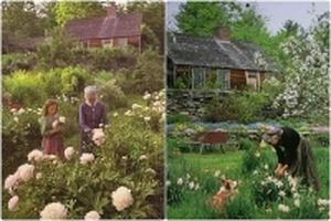 Cụ bà 92 tuổi an yên tận hưởng cuộc đời bên ngôi nhà rực rỡ sắc màu thiên nhiên