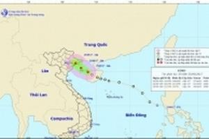 Chiều nay áp thấp nhiệt đới giật cấp 8 đổ bộ Quảng Ninh-Hải Phòng