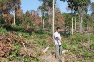 Diễn biến mới nhất vụ sai phạm trong quản lý đất đai ở Phú Quốc