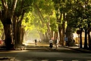 Dự báo thời tiết ngày hôm nay (25/10): Hà Nội tăng nhiệt, trời hửng nắng