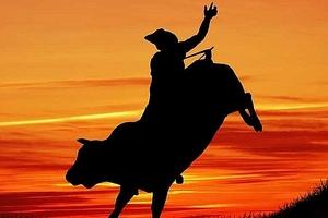 Thị trường chứng khoán 10/11: VN-Index chinh phục mốc 865 điểm, VNM bứt phá trước thềm bán đấu giá