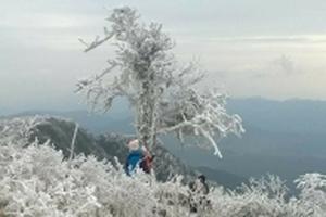 Lãnh đạo huyện Mộc Châu bác bỏ thông tin có hiện tượng băng giá trên địa bàn