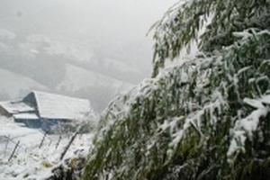 Dự báo thời tiết hôm nay 26/11: Vùng núi dưới 6 độ C, miền Bắc chìm trong rét buốt