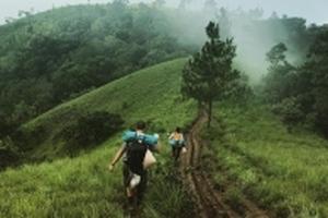 Tà Năng - Phan Dũng: Nghe tiếng thông reo và ngắm nhìn hoa gạo khoe sắc đỏ