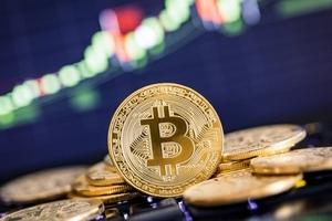 Giá bitcoin hôm nay (19/1): Cú nảy của 'con mèo chết'?