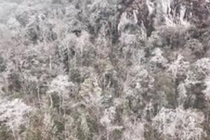 Dự báo thời tiết 6/1: Miền Bắc có nơi -1 độ, Đà Lạt rét 9 độ