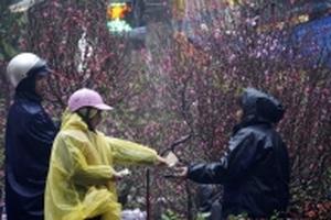 Dự báo thời tiết hôm nay 11/2: Miền Bắc mưa phùn, rét đậm ngày 26 Tết
