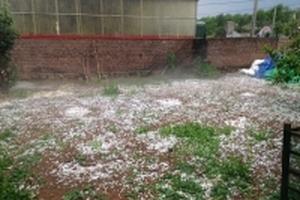 Dự báo thời tiết 16/4: Miền Bắc đề phòng mưa đá nhiều nơi