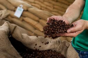 Giá cà phê hôm nay (26/4) quay đầu giảm, giá hồ tiêu lên 62.000 đồng/kg
