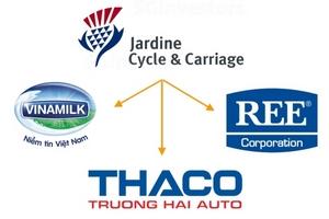 'Cá mập' nắm giữ Thaco, REE và Vinamilk - JC&C sắp chi gần 270 triệu USD trả cổ tức