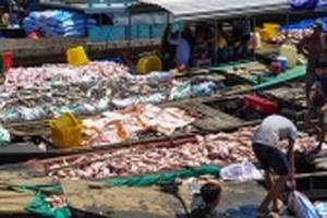 Đồng Nai: Người dân mỏi mòn chờ tiền hỗ trợ vụ gần 2.000 tấn cá chết