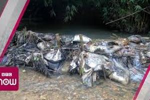 Dầu thải, cá chết đầu nguồn nước sông Đà