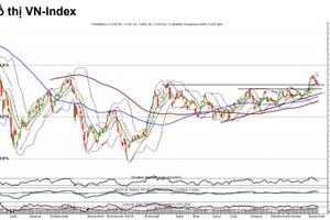 Nhận định thị trường chứng khoán tuần 18 - 22/11: Rủi ro thị trường gia tăng, kiểm định vùng hỗ trợ 1.000 - 1.008 điểm?