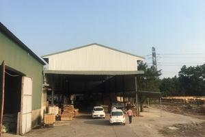 Vĩnh Phúc: Đất lâm nghiệp biến tướng thành nhà xưởng