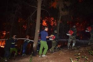 Cháy rừng lớn liên tiếp xảy ra ở Hà Tĩnh