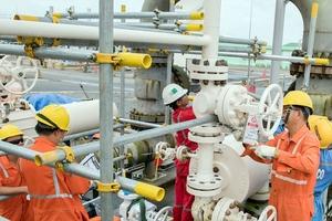 Dự án ống dẫn khí Nam Côn Sơn 2 điều chỉnh: Chọn xong nhà thầu nhiều gói thầu ngàn tỷ
