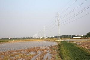 Tiết kiệm lớn tại 4 lô thầu ngành điện