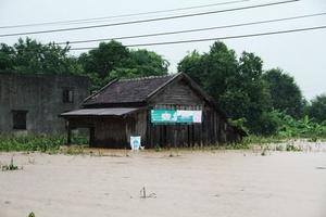 Mưa lũ ở Tây Nguyên: 9 người chết, thiệt hại nặng nề về tài sản
