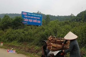 Kiểm tra khu du lịch 233ha ở Hà Nội buộc tháo dỡ 1 nhà vệ sinh