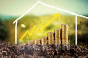 Top 10 cổ phiếu tăng/giảm mạnh nhất tuần: Nhóm dầu khí và ngân hàng nổi bật