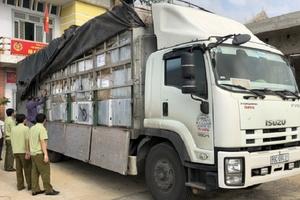 """Quảng Bình: Bắt giữ xe tải chở hàng """"lậu"""" trị giá trên 400 triệu đồng"""