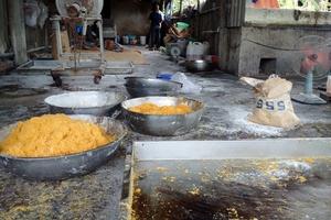 TP.HCM xử phạt hành chính 623 cơ sở vi phạm an toàn vệ sinh thực phẩm