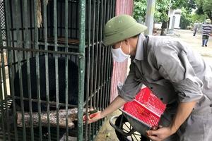 Cứu hộ động vật hoang dã: Nghề lắm gian nan