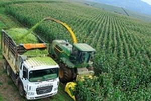 1/4 dư nợ tín dụng đang nằm trong lĩnh vực nông nghiệp