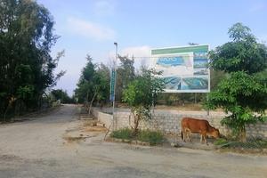 Dự án khu sinh thái biển 1.200 tỷ ở Hà Tĩnh: Thu hồi đất để… bỏ hoang?