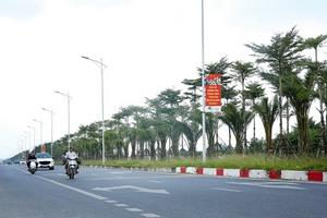 Đấu rộng rãi, ai trúng các gói thầu cây xanh tại Hà Nội?